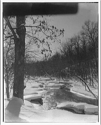 Winter scenes. Snow along frozen creek