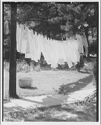 Laundry. Clothesline suspended between trees