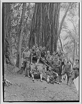 Wood Muir (Soldier). Group portrait of soldiers at base of tree