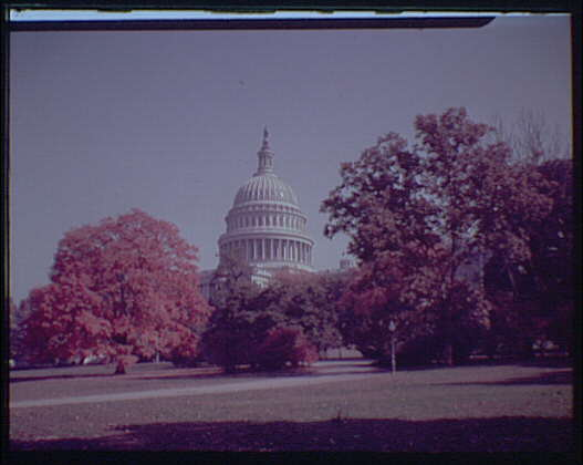 U.S. Capitol exteriors. U.S. Capitol with fall foliage in foreground, horizontal IV
