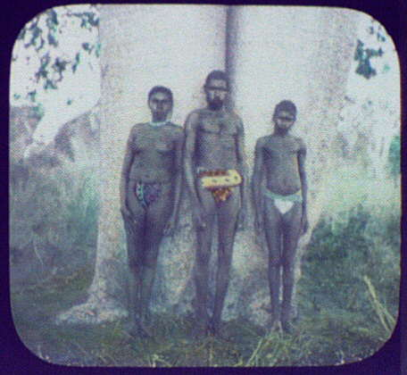 Kings Sound - aborigine man, woman, and boy in loin-clothes standing against large trunk of tree