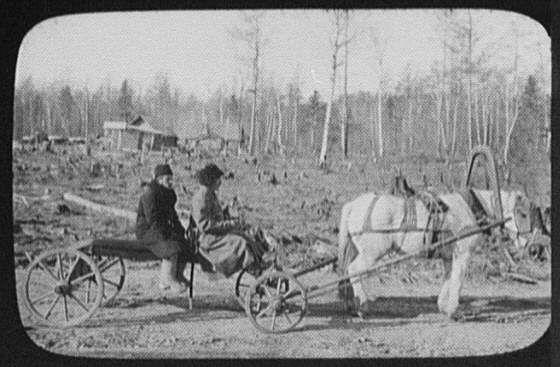 Horse-drawn wagon (Bayunka) in a clearing of the Eastern Siberian Railway